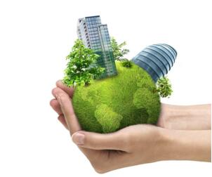 实现可持续发展